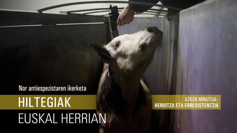 Hiltegiak  Euskal  Herrian