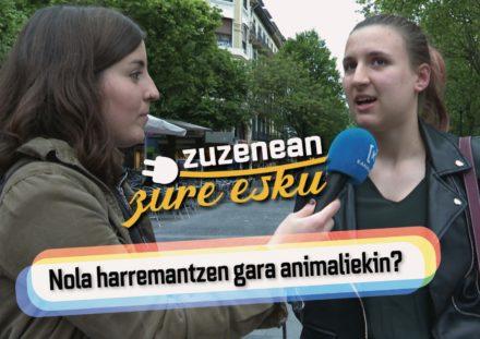 Kanaldude  ZZE  –  Nola  erlazionatzen  gara  animaliekin?