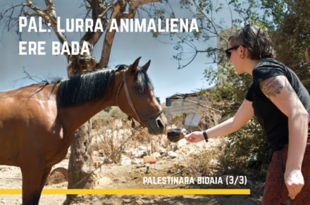 PAL: Lurra animaliena ere bada- Palestinarako bidaia (3/3)