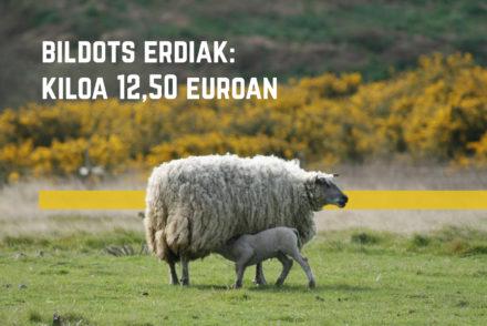 Bildots erdiak: kiloa 12,50 euroan
