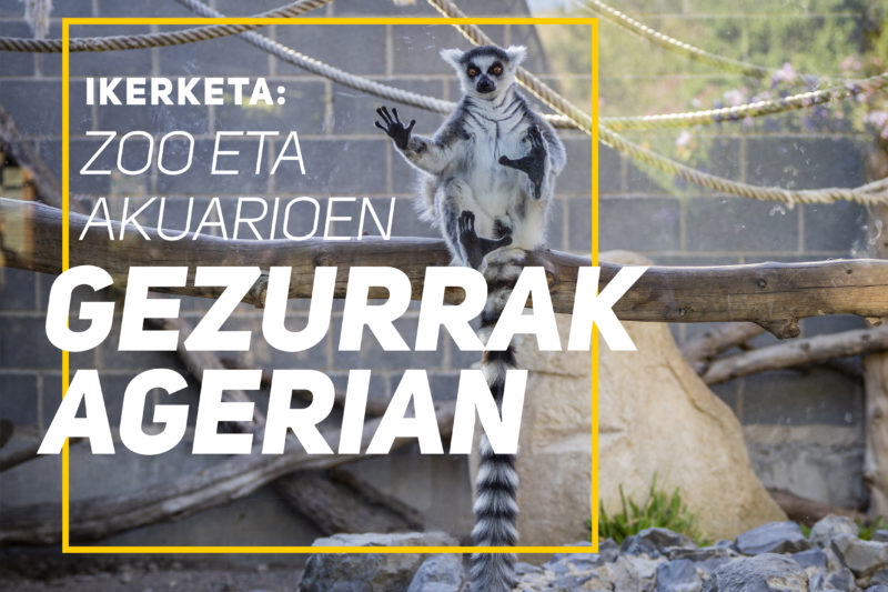 Ikerketa: Zoo eta akuarioen gezurrak agerian
