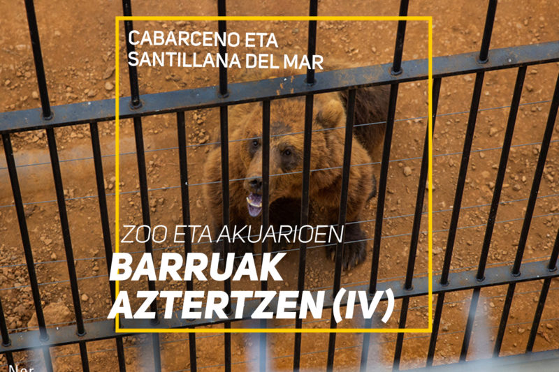 Cabarceno eta Santillana del Mar – Zoo eta akuarioen barruak aztertzen (IV)