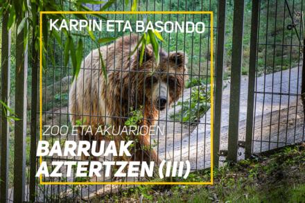 Karpin eta Basondo – Zoo eta akuarioen barruak aztertzen (III)